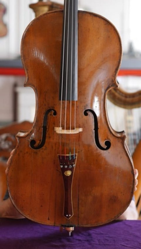 Italian Cello labelled Cappa late XVII century