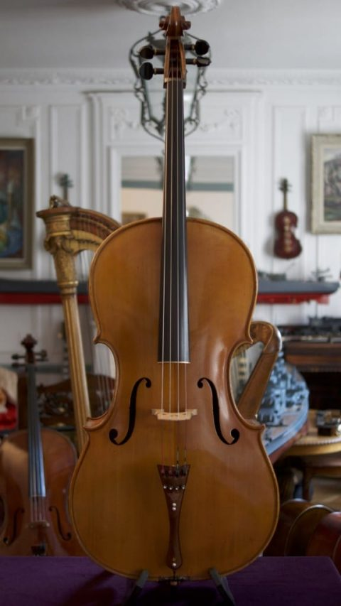 Cello Stelio Rossi 1954